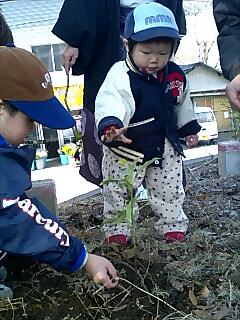節分の植樹 Tree planting on Setstubun,begining of spring