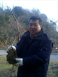 九州最後の植樹 Last tree planting at Kyusyu