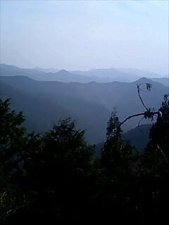 今日の風景4 Today's view4