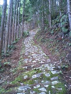 熊野古道の旅9 Journey of Kumano ancient road9