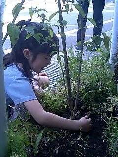 アースデイ宮崎の成功を祈って植樹 Tree planting wishing for wonderful earthday Miyazaki