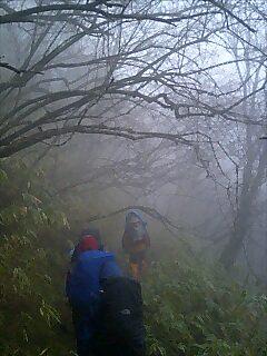 山道を歩く Walk in the mountain