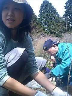 箱根やすらぎの森で植樹 Tree planting at Hakone forest of confort