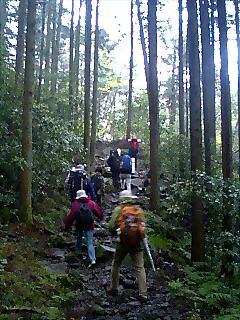 週末箱根ウォーク Weekend Hakone walk