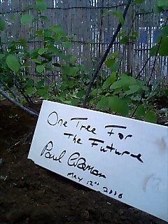 ものづくり学校で植樹 Tree planting at craft school