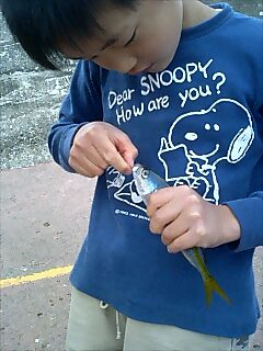 釣り fishing