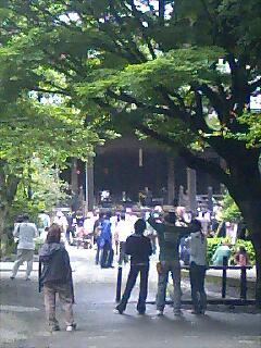 鎌倉妙本寺新月祭り Kamakura new moon fest.