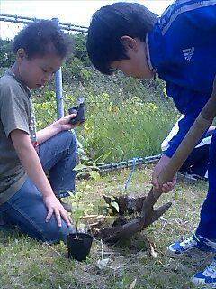 北海道初植樹 first tree planting in Hokkaido