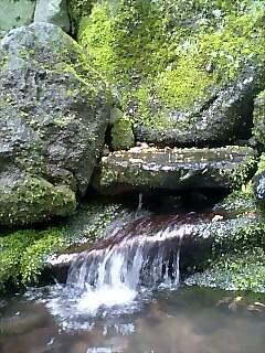 利尻富士甘露泉 Mt.Lishiri spring water