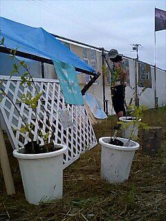 ライジングサン ロックフェスティバルでアースデイ展示 Setting earthday corner at Rising sun rock fest.