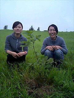 網走のテントランドでミズナラを10本植えました。 We planted 10 trees at Tent land Abashiri