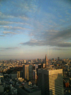 都庁の風景