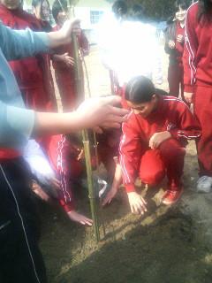 岩手県初植樹
