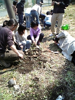 鬼怒川小学校で植樹