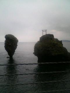 海から木が生えている