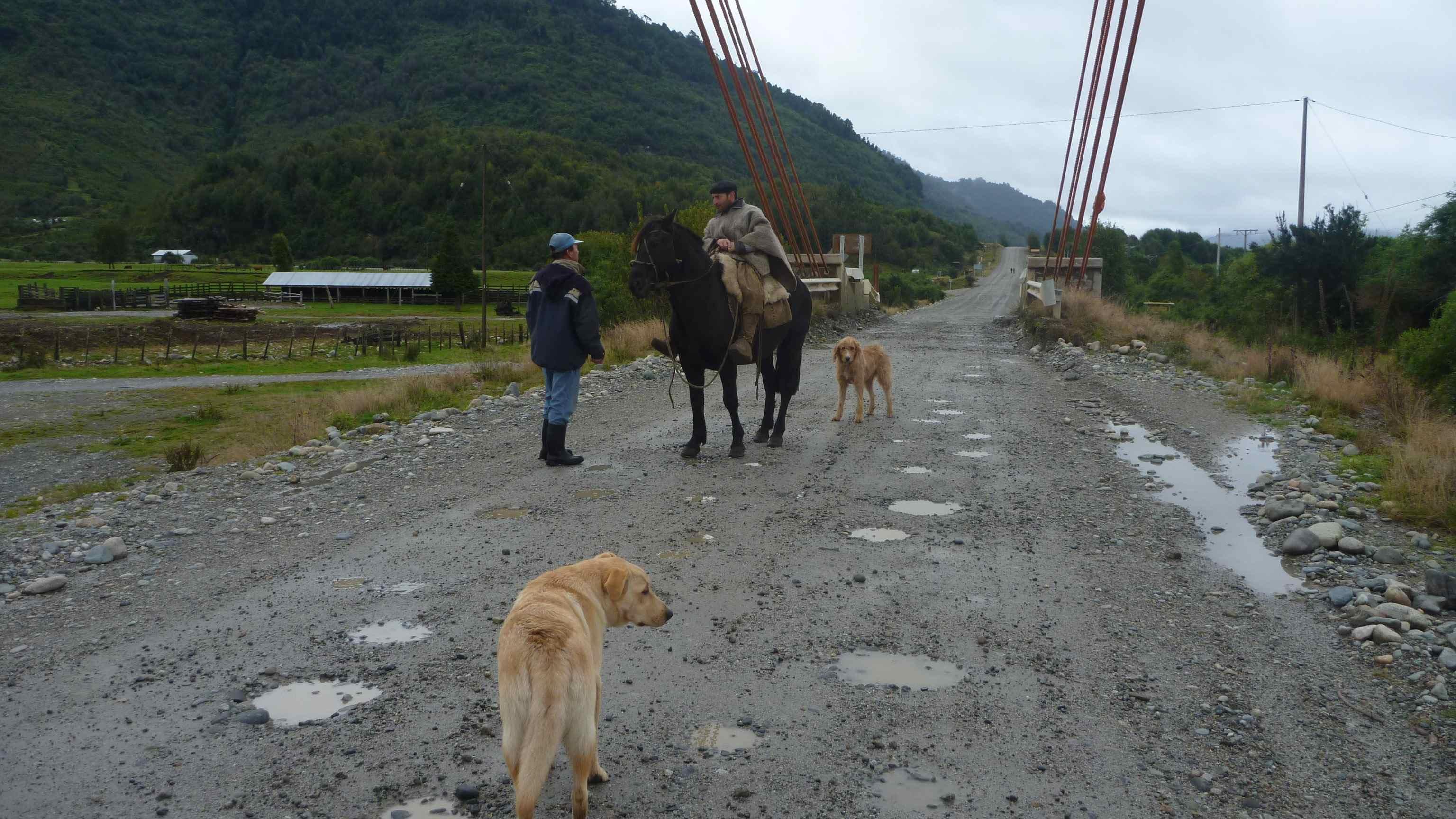 Patagonian Cowboy